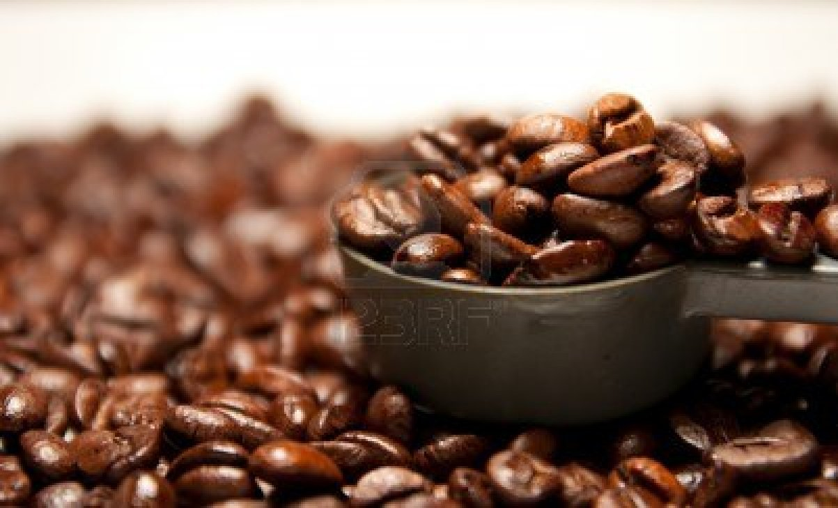 12115179-fresh-and-dry-of-arabica-coffee-bean-close-up